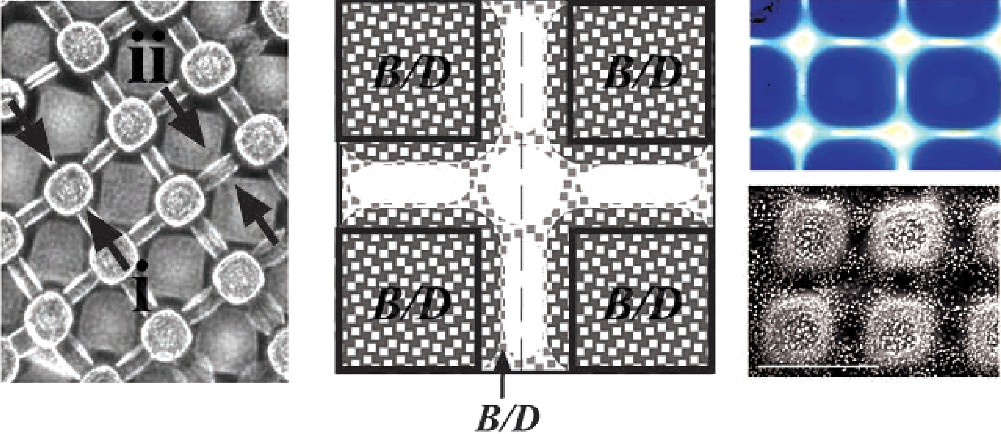 Picture of publication: One-Step Multilevel Microfabrication by Reaction–Diffusion