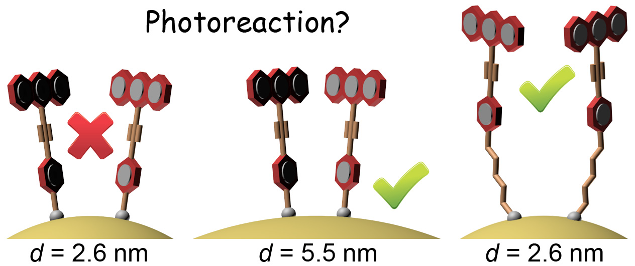 Picture of publication: Support Curvature and Conformational Freedom Control Chemical Reactivity of Immobilized Species