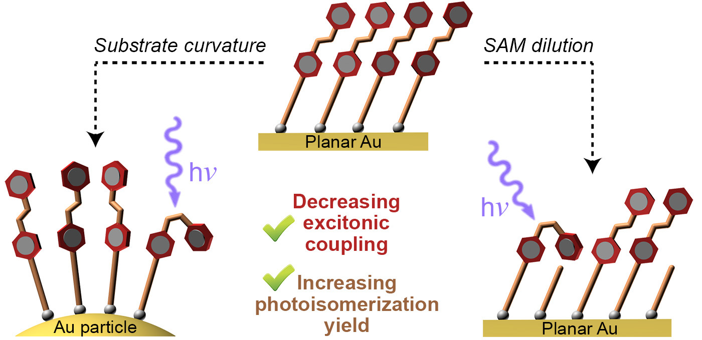 Picture of publication: Tailoring the Properties of Surface-Immobilized Azobenzenes by Monolayer Dilution and Surface Curvature
