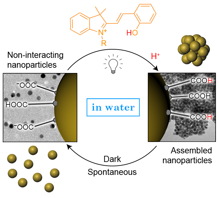 Picture of publication: Aqueous Light-Controlled Self-Assembly of Nanoparticles