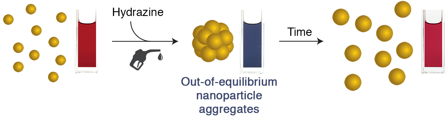 Picture of publication: Out-of-Equilibrium Aggregates and Coatings during Seeded Growth of Metallic Nanoparticles