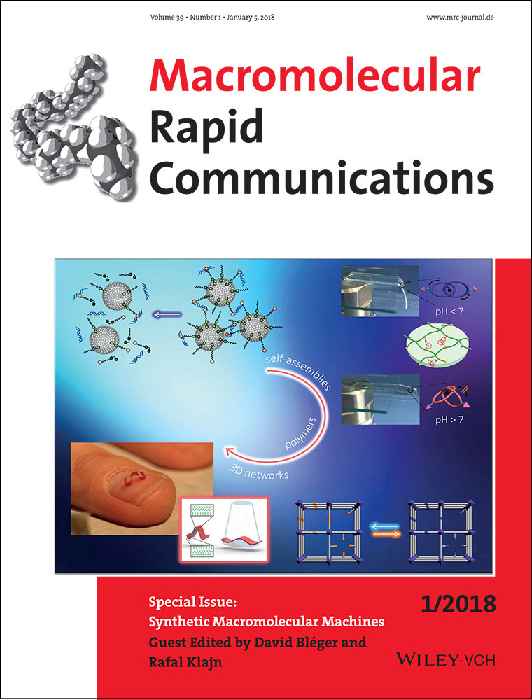 Picture of publication: Integrating Macromolecules with Molecular Switches