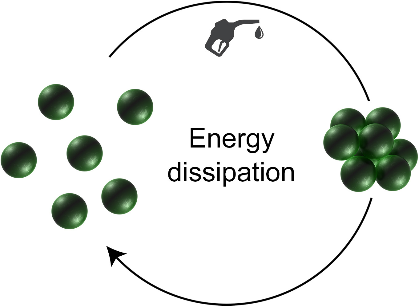 Picture of publication: Dissipative Self-Assembly Driven by the Consumption of Chemical Fuels
