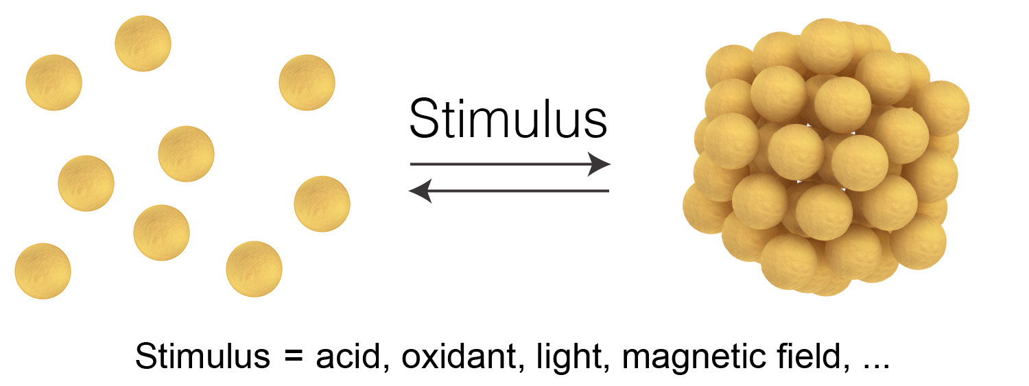 Picture of publication: Stimuli-responsive self-assembly of nanoparticles