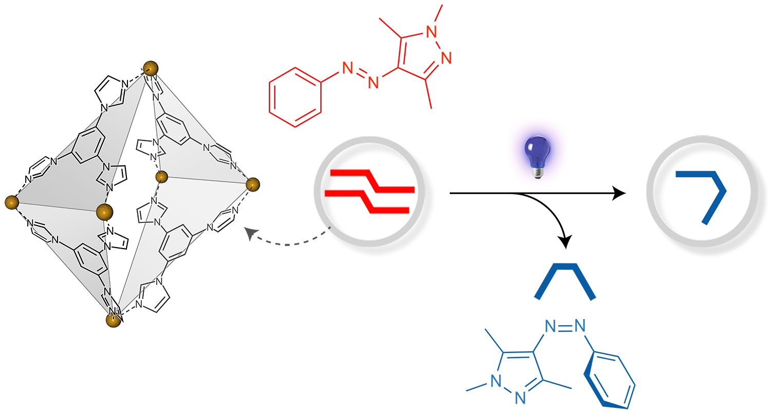 Picture of publication: Reversible switching of arylazopyrazole within a metal–organic cage