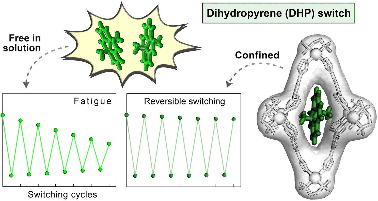 Picture of publication: Improving Fatigue Resistance of Dihydropyrene by Encapsulation within a Coordination Cage