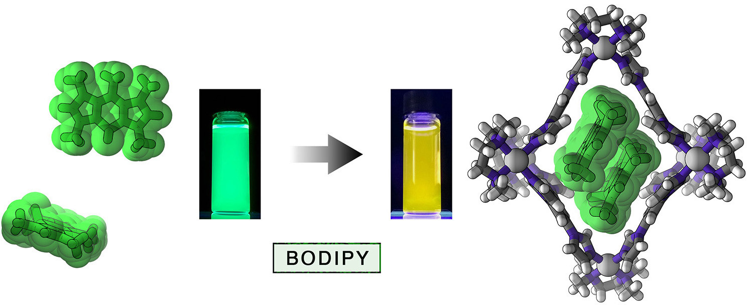 Picture of publication: Modulating the Optical Properties of BODIPY Dyes by Noncovalent Dimerization within a Flexible Coordination Cage